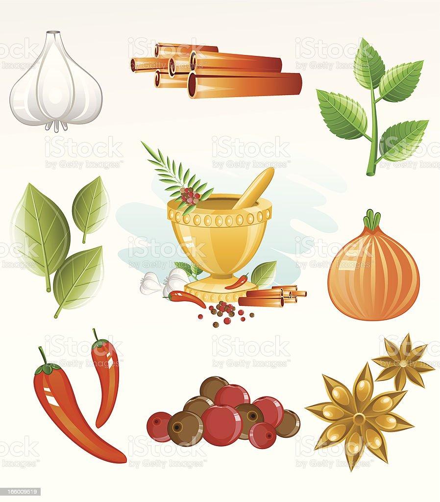 Spice Icon Set vector art illustration