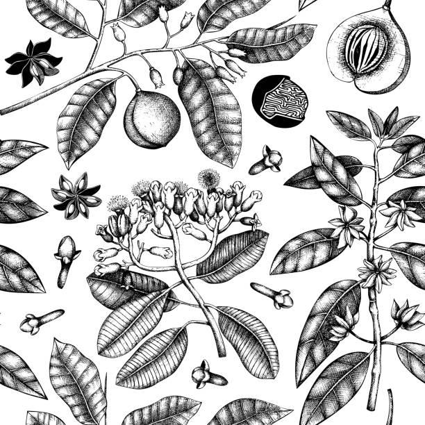 spice plants pattern vector art illustration