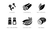 Spices and condiments icons set, cloves, cinnamon, bay leaves, salt and pepper, cocoa pod, nutmeg black badges vector Illustration isolated on a white background.