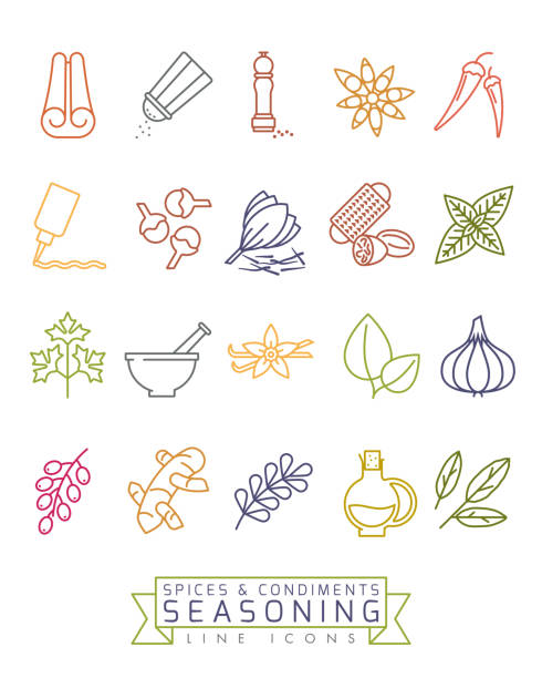 향신료와 양념 벡터 색상 선 아이콘 세트 - 바닐라 양념류 stock illustrations