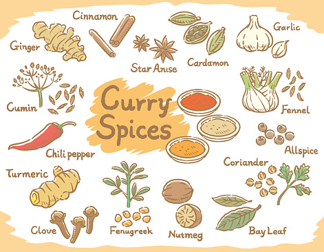 curry stock illustrations