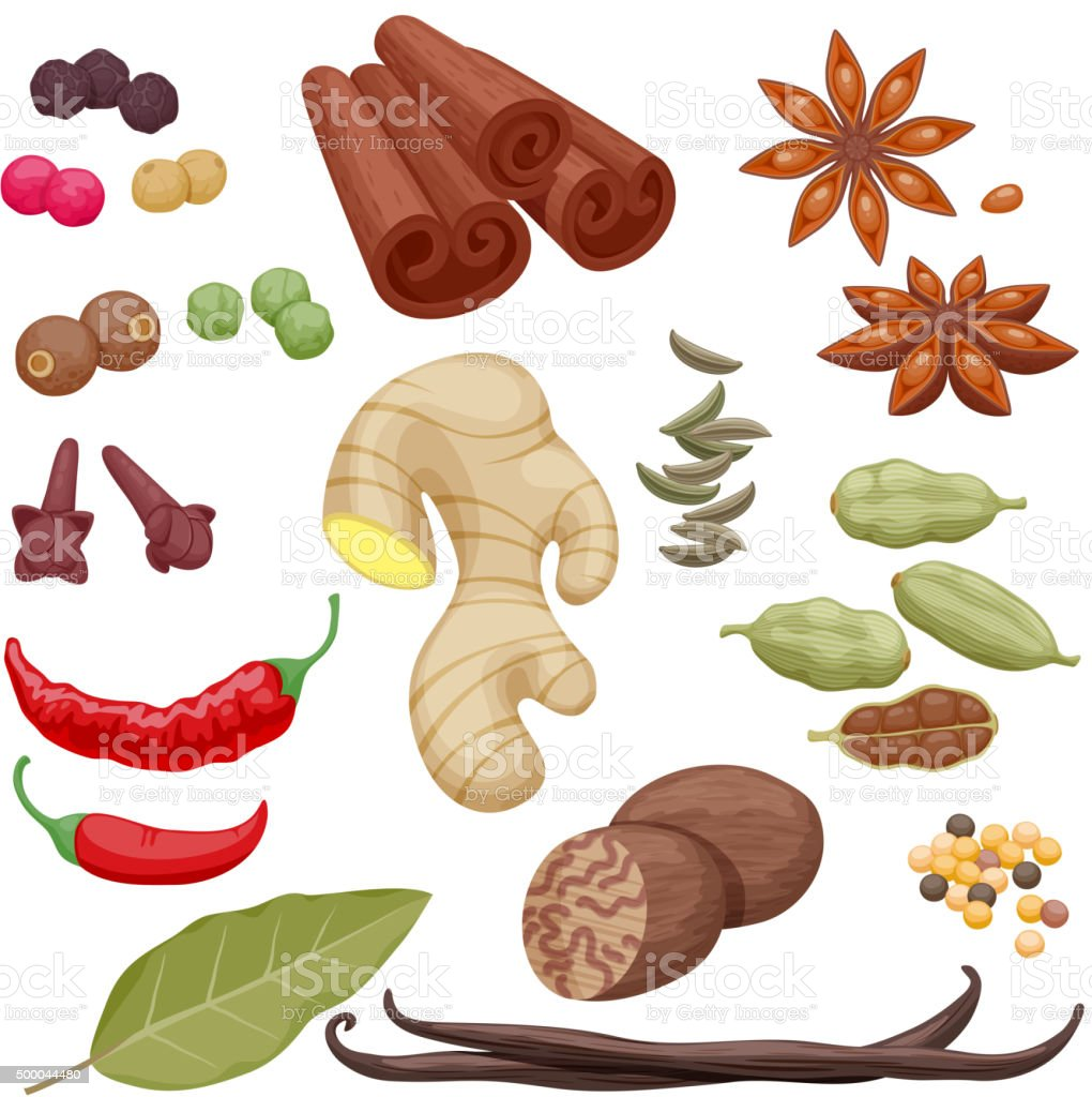 Spices and herbs icons set illustration vector art illustration
