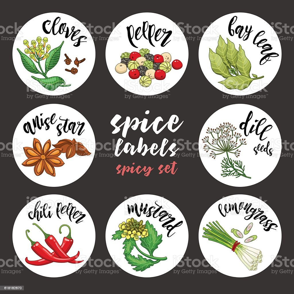 Spices and herbs labels and stickers. Colored vector spicy set vector art illustration