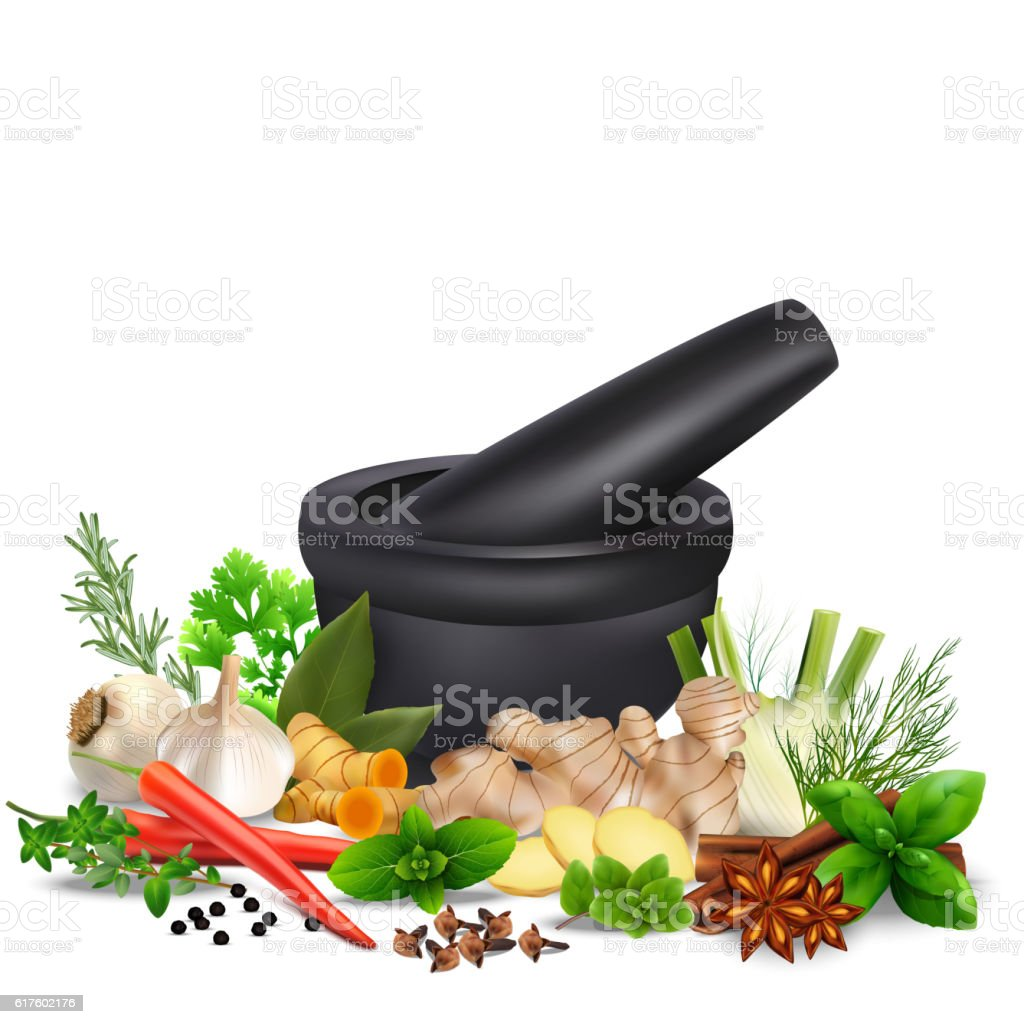 Spices and herbs with mortar and pestle isolated white background vector art illustration