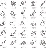 Spices and seasonings vector icons