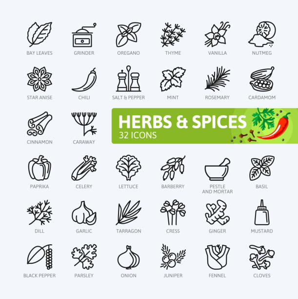 spices, condiments and herbs  - outline icons collection - лекарственная трава stock illustrations