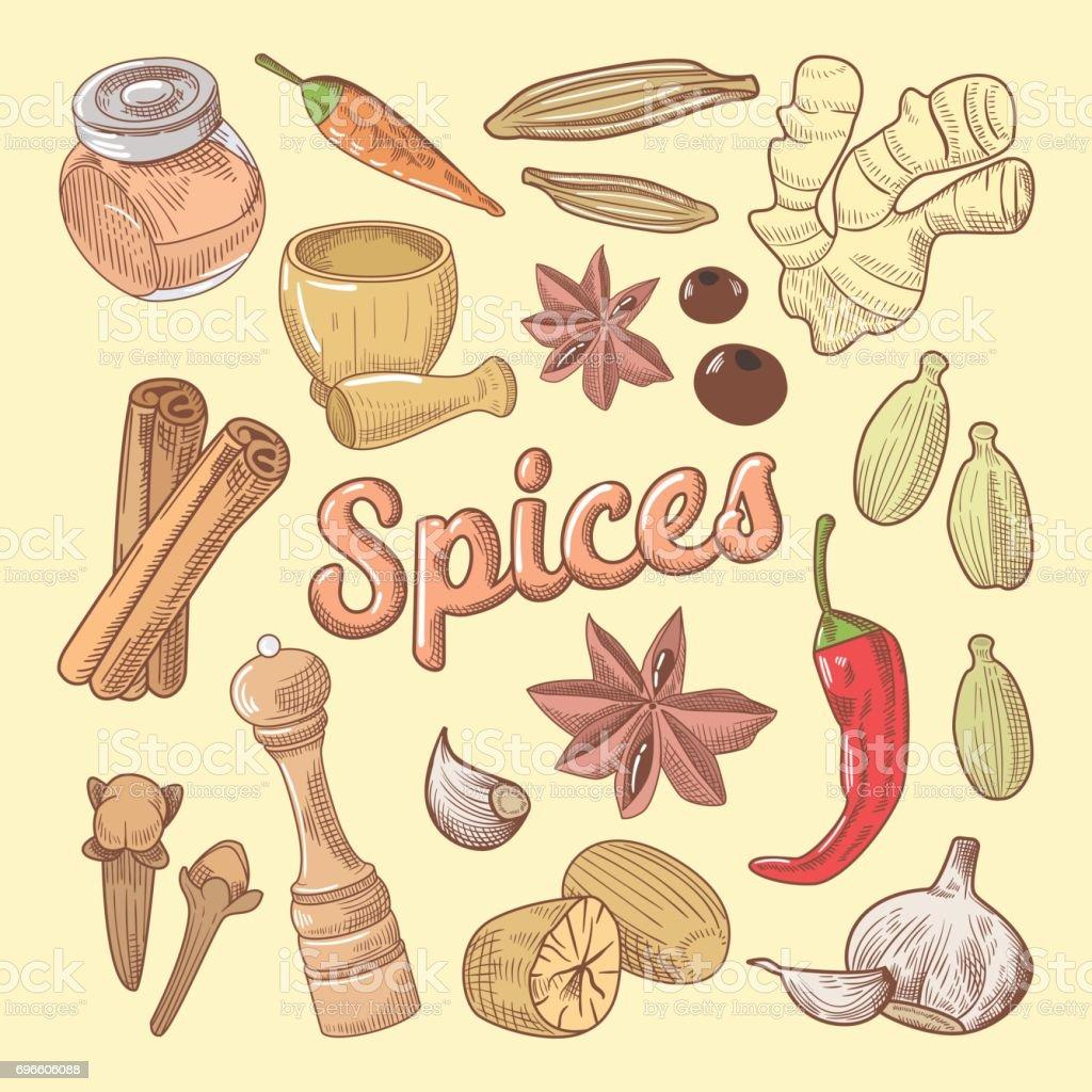 Épices dessinés à la main Doodle avec piment - Illustration vectorielle