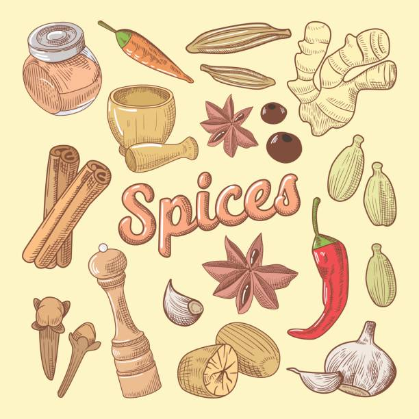 spices hand drawn doodle with chili pepper - indian food stock illustrations, clip art, cartoons, & icons