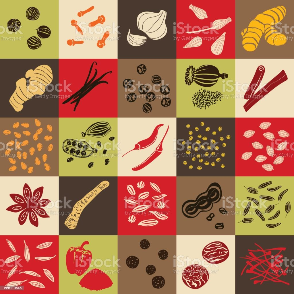 Spices hand drawn vector big icon squared set vector art illustration