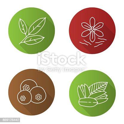 Spices flat linear vector icons set. Bay leaves, pistachio, allspice, saffron