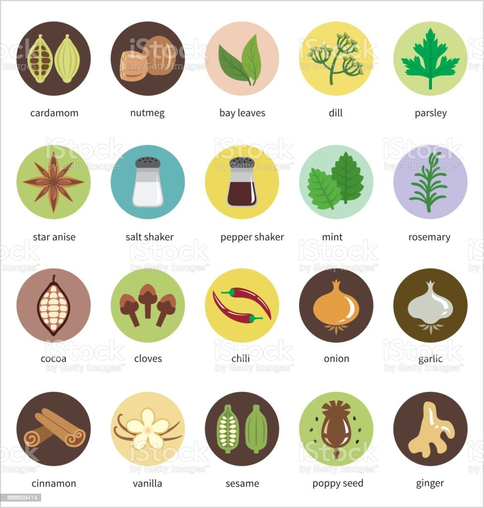 Spices vector icon set vector art illustration