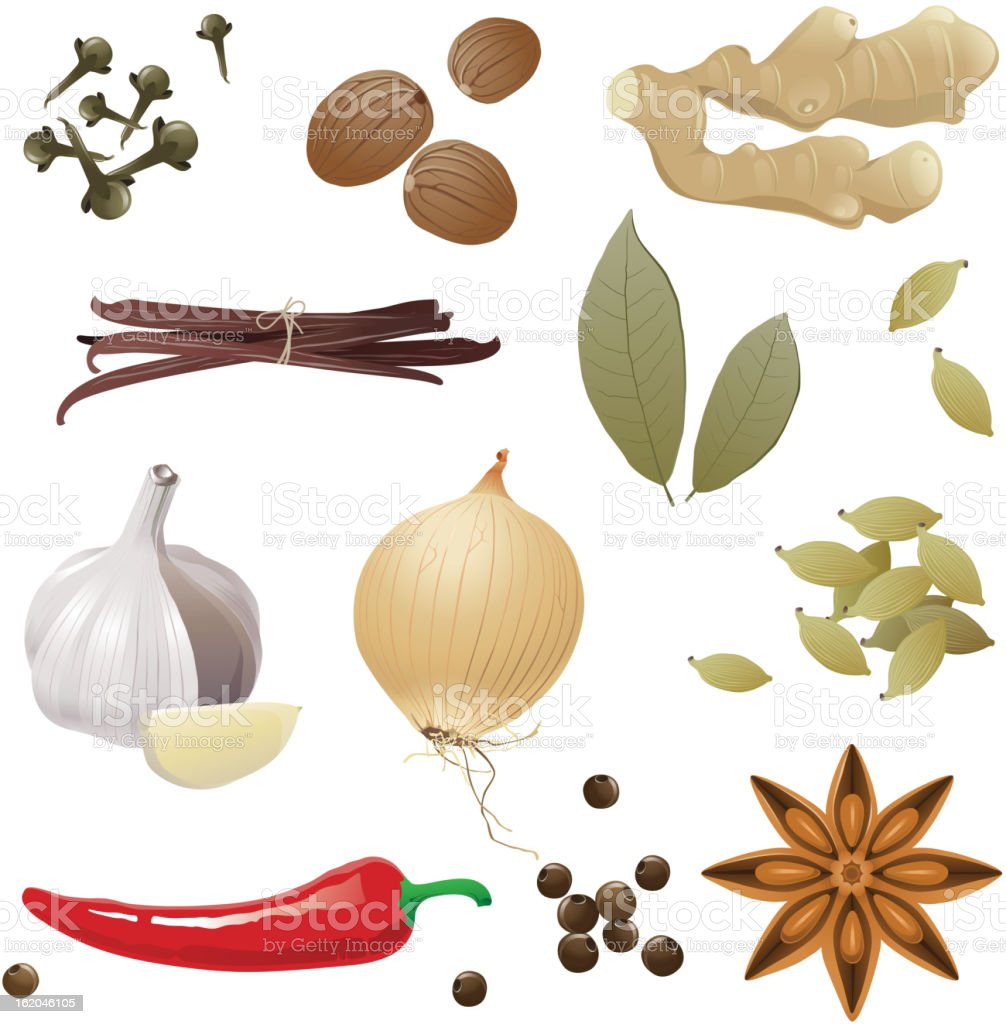spices royalty-free spices stock vector art & more images of anise