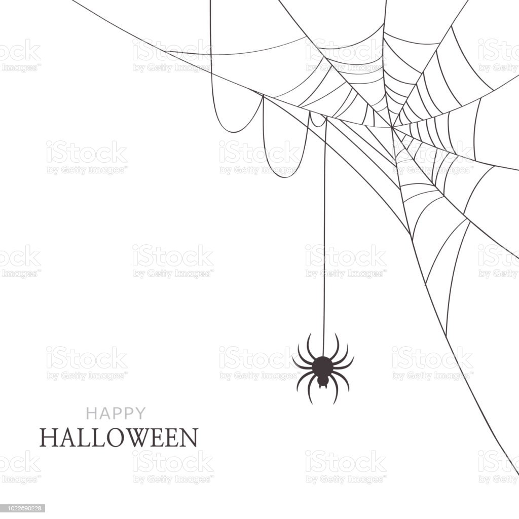 Araignée Et Toile Daraignée Sur Fond Blanc Carte De Voeux