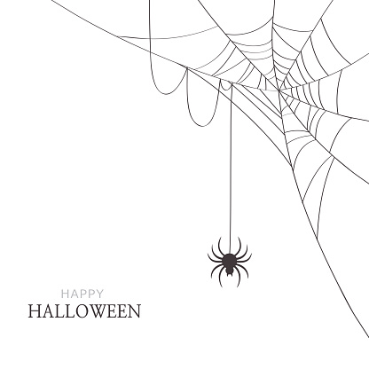 Spider and cobweb on white background.Happy Halloween greeting card