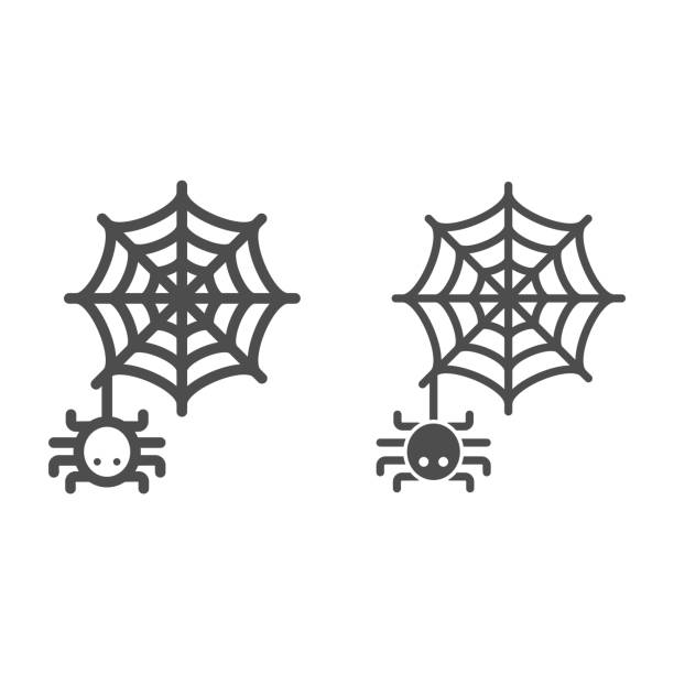 Spider and web line and solid icon, Halloween concept, Spider sign on white background, Araneae on mesh icon in outline style for mobile concept and web design. Vector graphics. Spider and web line and solid icon, Halloween concept, Spider sign on white background, Araneae on mesh icon in outline style for mobile concept and web design. Vector graphics arachnid stock illustrations