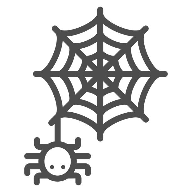 Spider and web line icon, Halloween concept, Spider sign on white background, Araneae on mesh icon in outline style for mobile concept and web design. Vector graphics. Spider and web line icon, Halloween concept, Spider sign on white background, Araneae on mesh icon in outline style for mobile concept and web design. Vector graphics arachnid stock illustrations