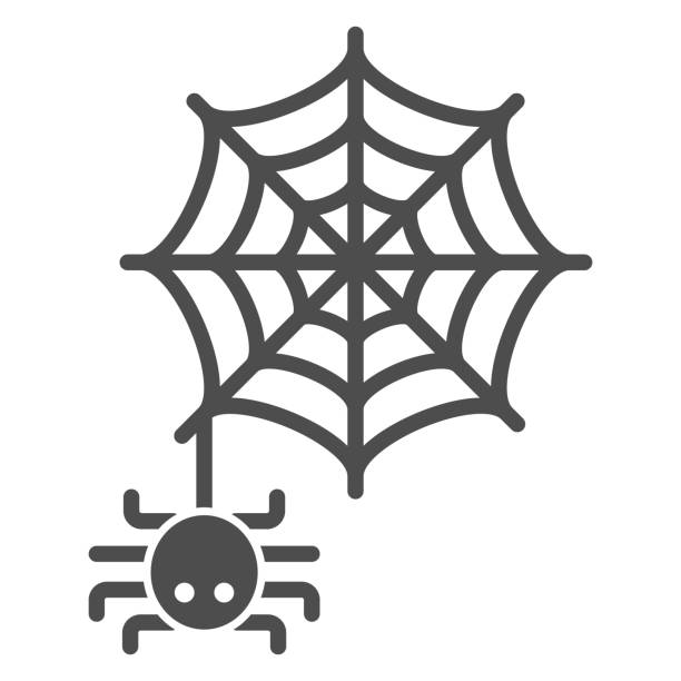 Spider and web solid icon, Halloween concept, Spider sign on white background, Araneae on mesh icon in glyph style for mobile concept and web design. Vector graphics. Spider and web solid icon, Halloween concept, Spider sign on white background, Araneae on mesh icon in glyph style for mobile concept and web design. Vector graphics arachnid stock illustrations