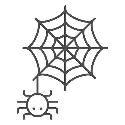 Spider and web thin line icon, Halloween concept, Spider sign on white background, Araneae on mesh icon in outline style for mobile concept and web design. Vector graphics.