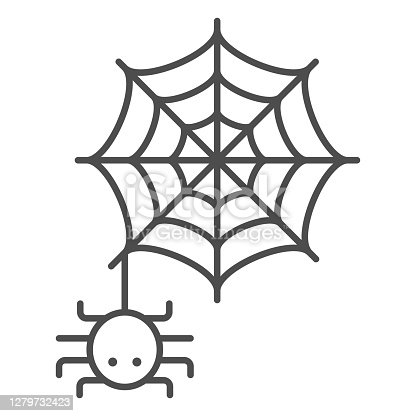 istock Spider and web thin line icon, Halloween concept, Spider sign on white background, Araneae on mesh icon in outline style for mobile concept and web design. Vector graphics. 1279732423