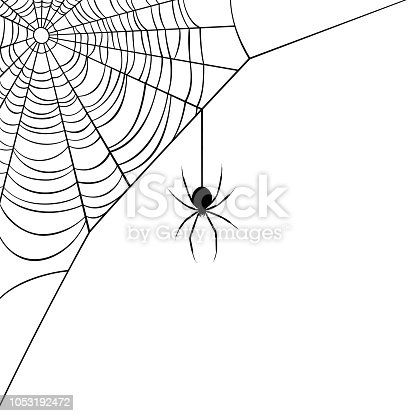 Vector illustration of a corner web/spider design. Illustration uses only solid black for the web and spider, no colors/gradients/meshes/blends. Includes AI10-compatible .eps format, along with a high-res .jpg.