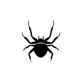 spider icon. Elements of world of insects icon for concept and web apps. Illustration  icon for website design and development, app development. Premium icon