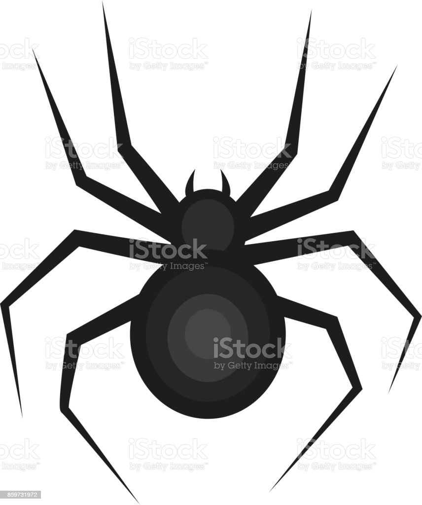 Spider Icon Is A Flat Style Isolated On White Background Vector ...