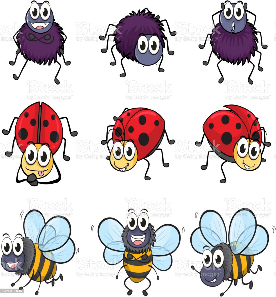 Spider, ladybug and a bee royalty-free spider ladybug and a bee stock vector art & more images of animal antenna