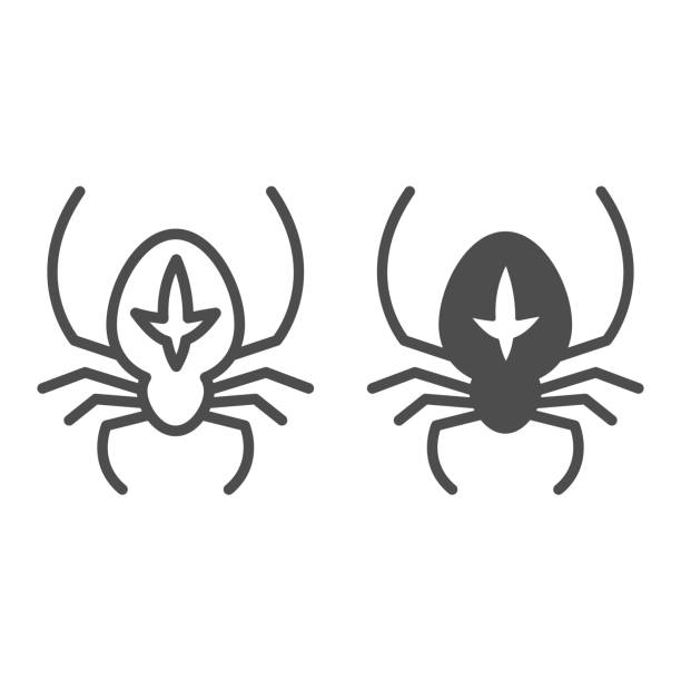 Spider line and solid icon, halloween concept, arthropod animal that weaves web sign on white background, spider with marking icon in outline style for mobile concept and web design. Vector graphics. Spider line and solid icon, halloween concept, arthropod animal that weaves web sign on white background, spider with marking icon in outline style for mobile concept and web design. Vector graphics arachnid stock illustrations