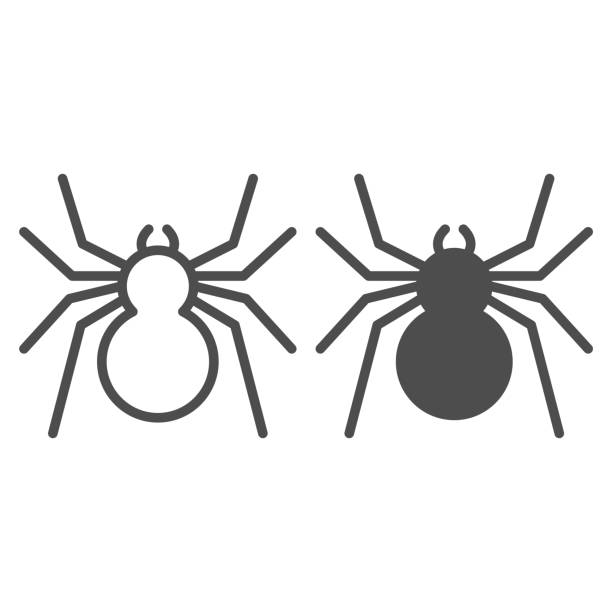 Spider line and solid icon, Insects concept, predatory arachnid sign on white background, classic spider icon in outline style for mobile concept and web design. Vector graphics. Spider line and solid icon, Insects concept, predatory arachnid sign on white background, classic spider icon in outline style for mobile concept and web design. Vector graphics arachnid stock illustrations