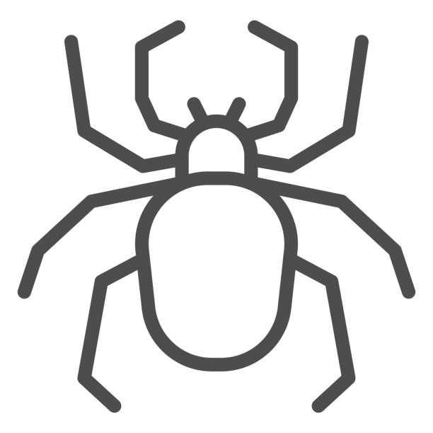 Spider line icon, Insects concept, Scary arachnid insect sign on white background, spider silhouette icon in outline style for mobile concept and web design. Vector graphics. Spider line icon, Insects concept, Scary arachnid insect sign on white background, spider silhouette icon in outline style for mobile concept and web design. Vector graphics arachnid stock illustrations