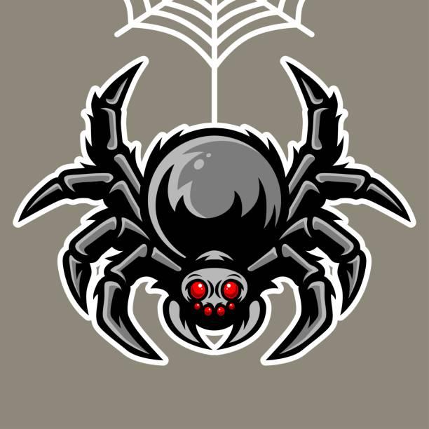 spider mascot hanging on the spider web illustration - tarantula stock illustrations
