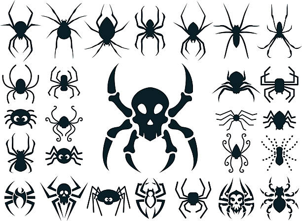Spider Shapes Set for Halloween vector art illustration