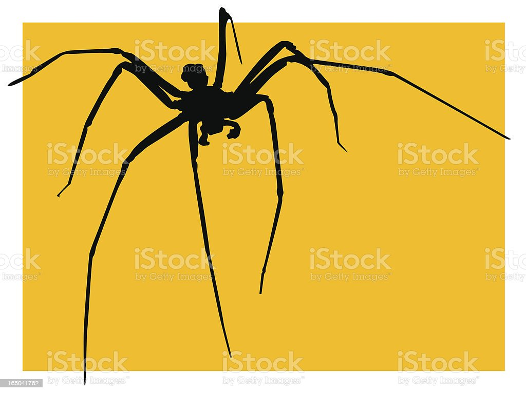Spider silhouettes with yellow background royalty-free spider silhouettes with yellow background stock vector art & more images of animal body part