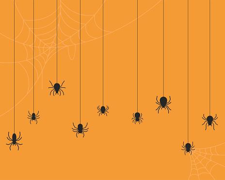 Spider vector background