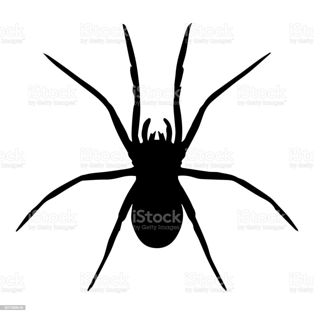 spider vector isolated stock vector art more images of animal rh istockphoto com spyder victor paintball spyder victor 2