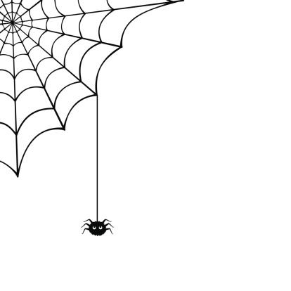 Spider web and spider. Vector illustration.