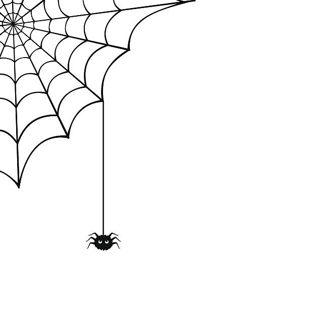 spider web und Spinne.  Vektor-illustration. – Vektorgrafik
