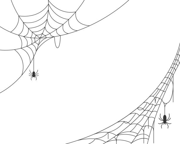 illustrazioni stock, clip art, cartoni animati e icone di tendenza di sfondo ragnatela - halloween