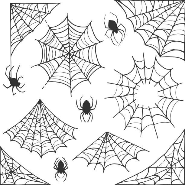 illustrazioni stock, clip art, cartoni animati e icone di tendenza di spider web halloween symbol. cobweb decoration elements collection. halloween cobweb vector frame and borders with spider for scary design - web