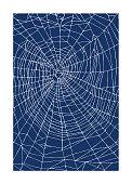 Spider Web Pattern