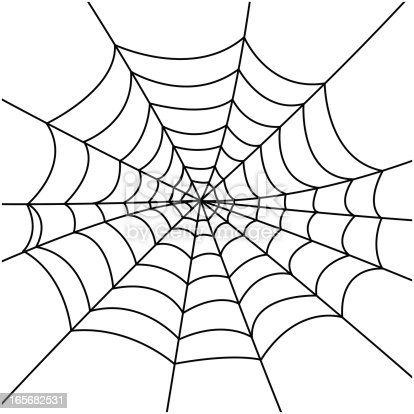 A spider web. Also in this series: