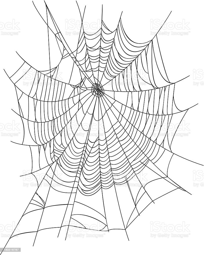 Spider Web royalty-free spider web stock vector art & more images of arachnid
