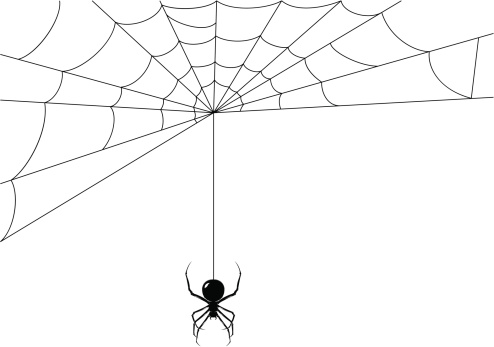 Spider while it's making its web
