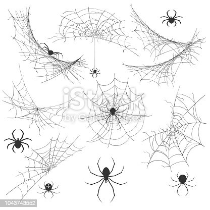 Spider with cobweb. Venom spider vector illustration for halloween background graphics, vintage creepy corner spiderweb decoration