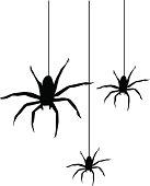 3 spiders - Drop In!