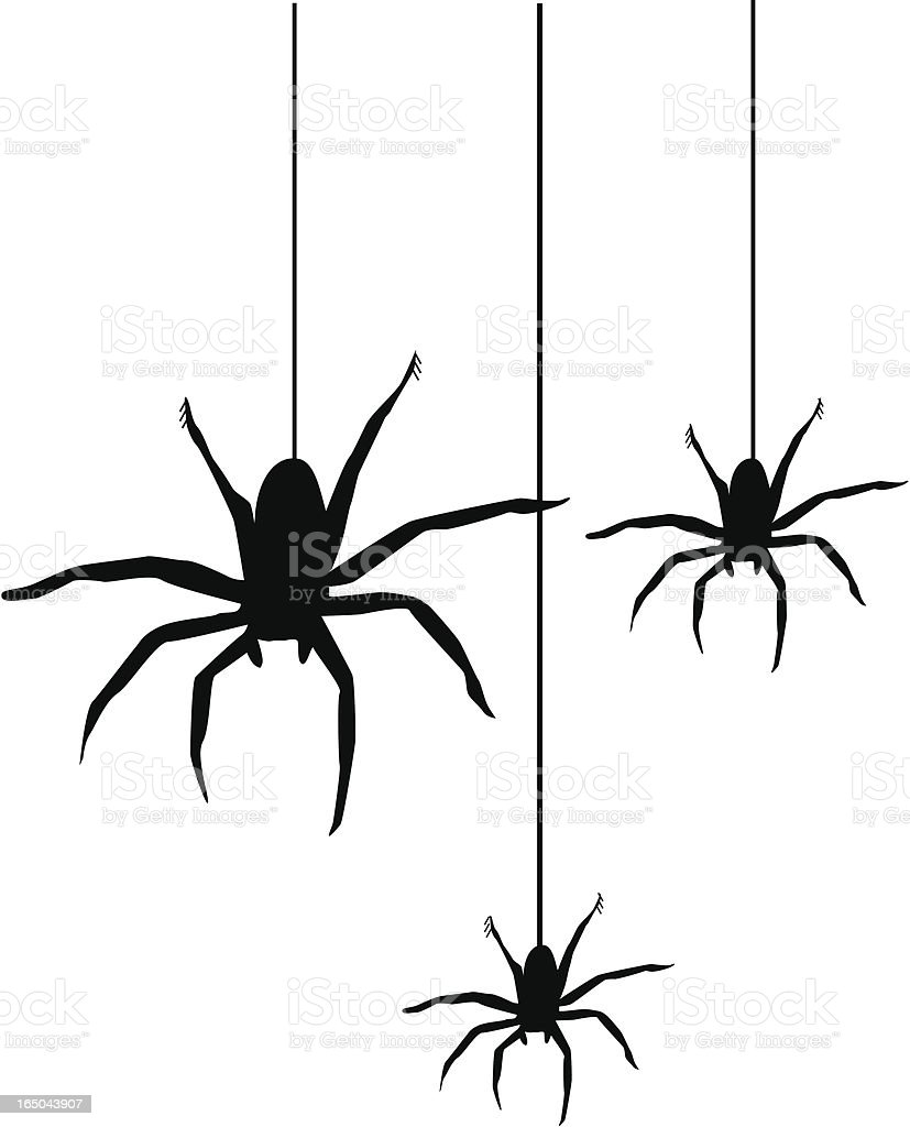 royalty free spiders clip art vector images illustrations istock rh istockphoto com clip art spider web clip art spider 8 shoes