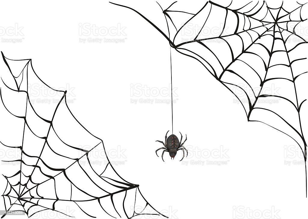 Spiderweb. Big black spider web. Black scary spider. Poison spider vector art illustration