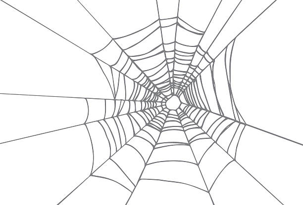 Best Spider Web Illustrations, Royalty-Free Vector Graphics & Clip Art