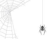 Spiderweb on white background and spider