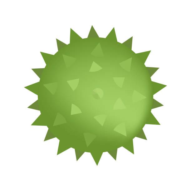 spiked sensorische kugel der grünen farbe auf weiß isoliert. vektor-illustration - sensorischer impuls stock-grafiken, -clipart, -cartoons und -symbole